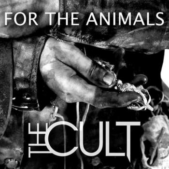 the_cult_for_the_animals.jpg